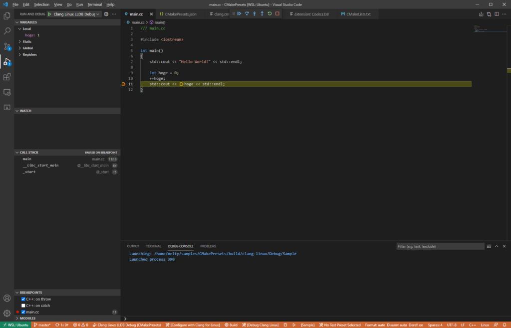 Visual Studio Code: WSL lldb debugging